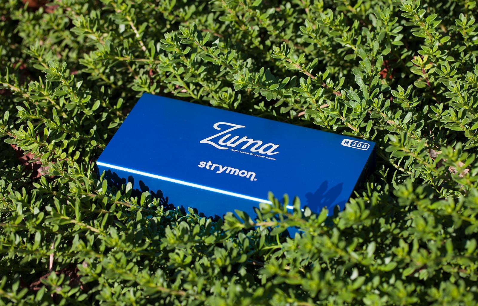 Strymon Zuma R300 pedal power supply